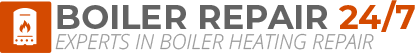 New Shoreham Boiler Repair Logo